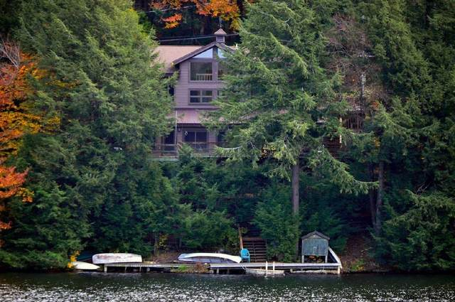 57 Lake View Rd, Petersburgh, NY 12138 (MLS #202013251) :: 518Realty.com Inc