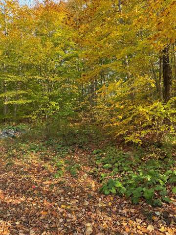 575 Lake Desolation Rd, Middle Grove, NY 12850 (MLS #202030721) :: The Shannon McCarthy Team | Keller Williams Capital District