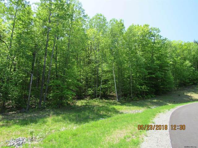 130 Watershed Rd, Diamond Point, NY 12845 (MLS #180465) :: 518Realty.com Inc