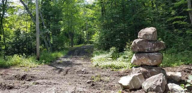 Clendon Brook Rd, Queensbury, NY 12804 (MLS #201826581) :: The Shannon McCarthy Team | Keller Williams Capital District