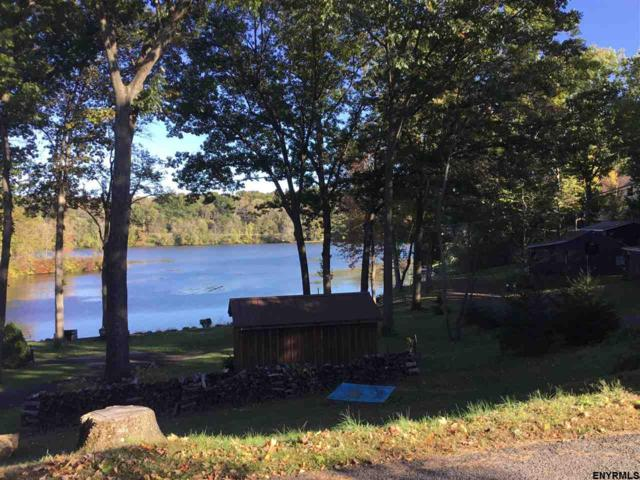 209 Pineview Rd, Niverville, NY 12130 (MLS #201831420) :: 518Realty.com Inc