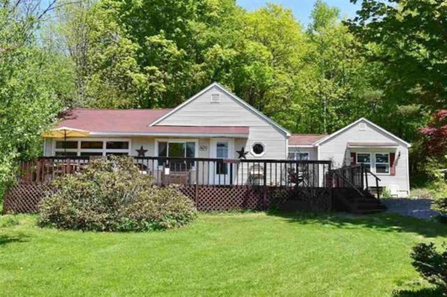 202 Summit Lake Rd, Summit, NY 12175 (MLS #201920322) :: Picket Fence Properties