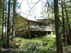 118 Forest Rd, Indian Lake, NY 12842 (MLS #171732) :: 518Realty.com Inc