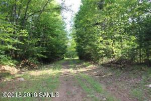 0000 State Route 28, Lot 2, Wevertown, NY 12886 (MLS #182269) :: CKM Team Realty