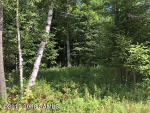 Lot 1.13 State Route 30, Indian Lake, NY 12842 (MLS #182646) :: 518Realty.com Inc