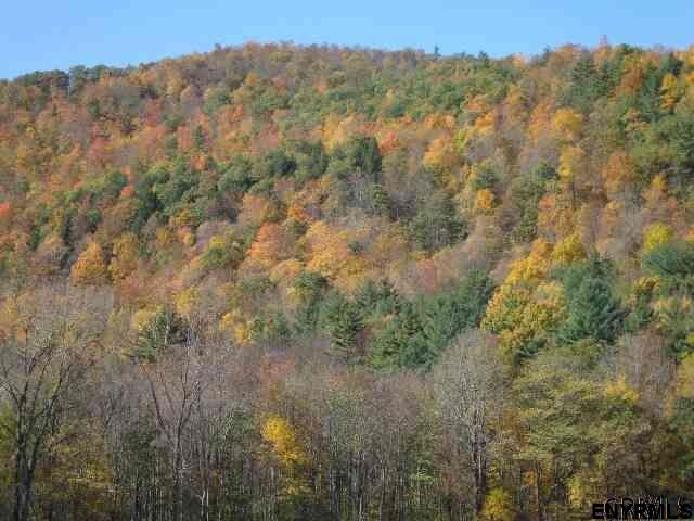 lot #2 Route 22, Petersburgh, NY 12138 (MLS #201813032) :: 518Realty.com Inc