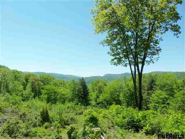 00 Goodell Rd, Petersburgh, NY 12138 (MLS #201825434) :: 518Realty.com Inc