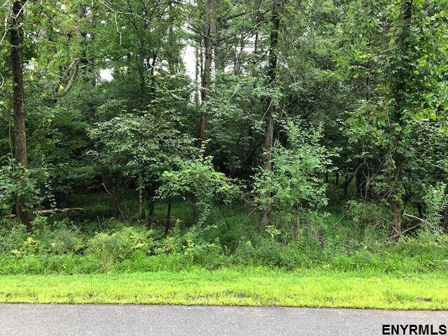 Ss 59 Sleepy Hollow Rd, Coxsackie, NY 12051 (MLS #201826945) :: 518Realty.com Inc