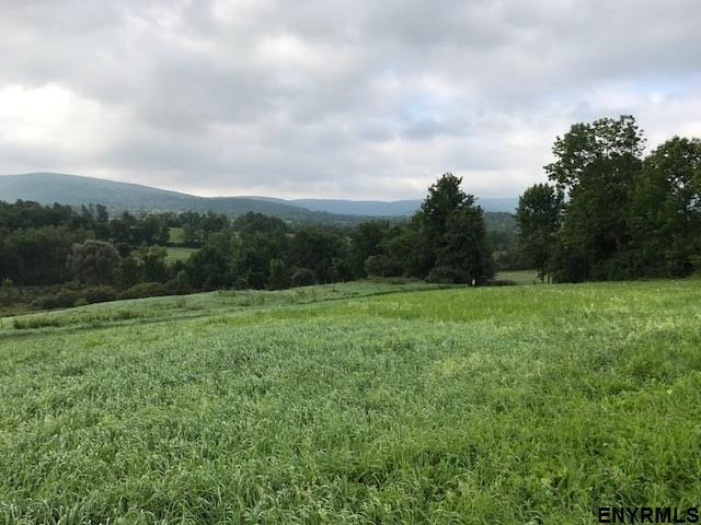 115 Mountain Meadows La, Cobleskill, NY 12043 (MLS #201827030) :: 518Realty.com Inc