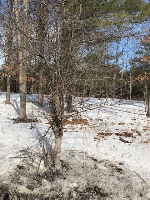 464 Stove Pipe Rd, Voorheesville, NY 12186 (MLS #201913505) :: Picket Fence Properties