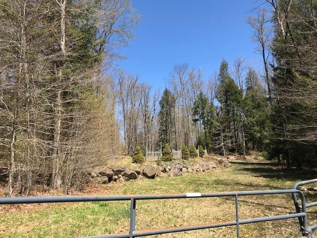 119 Mountain Lake South Shore R, Gloversville, NY 12078 (MLS #201919818) :: 518Realty.com Inc