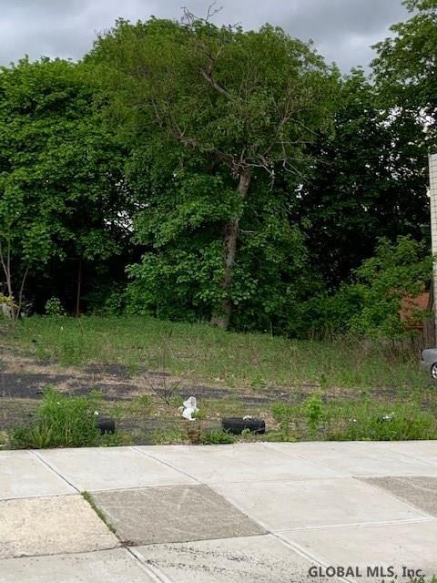 231 Park Av, Albany, NY 12022 (MLS #201920912) :: Picket Fence Properties