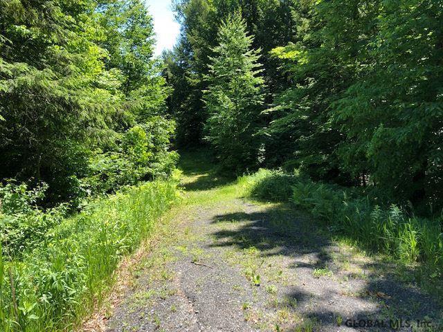 lot 1 Route 9R, Gansevoort, NY 12831 (MLS #201924963) :: Picket Fence Properties