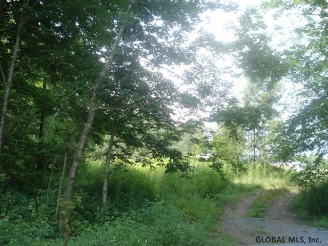 43 County Route 31, Salem, NY 12865 (MLS #201925582) :: Picket Fence Properties