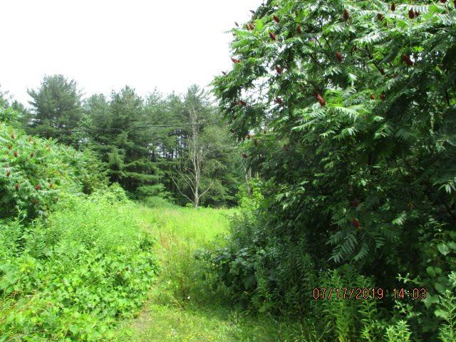 718 Swaggertown Rd, Charlton, NY 12019 (MLS #201925627) :: Picket Fence Properties