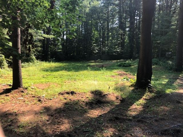 202 Greenfield Av, Ballston Spa, NY 12020 (MLS #201926752) :: Picket Fence Properties
