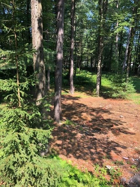 352 Northline Rd, Ballston Spa, NY 12020 (MLS #201926756) :: Picket Fence Properties