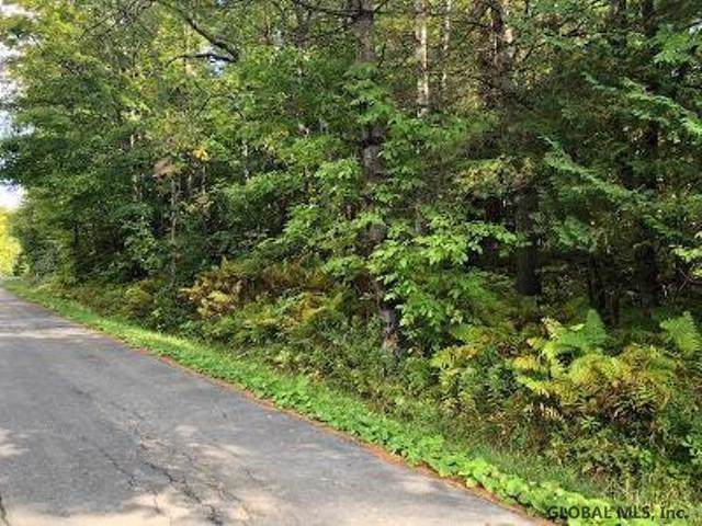 0 Hogsback Rd, Crown Point, NY 12928 (MLS #201930375) :: Picket Fence Properties