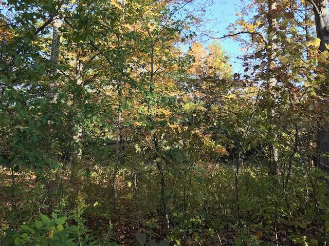 33.3 Stove Pipe Rd, Voorheesville, NY 12186 (MLS #201932579) :: 518Realty.com Inc