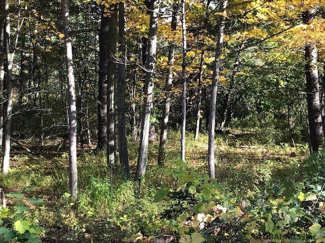 460 Stove Pipe Rd, Voorheesville, NY 12186 (MLS #201932580) :: 518Realty.com Inc