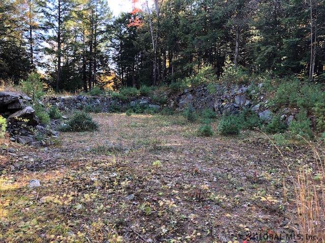 68 Stage Coach Rd, Chestertown, NY 12817 (MLS #201932613) :: Picket Fence Properties