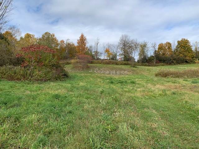 14 Cooksboro Rd, Troy, NY 12182 (MLS #201932688) :: Picket Fence Properties