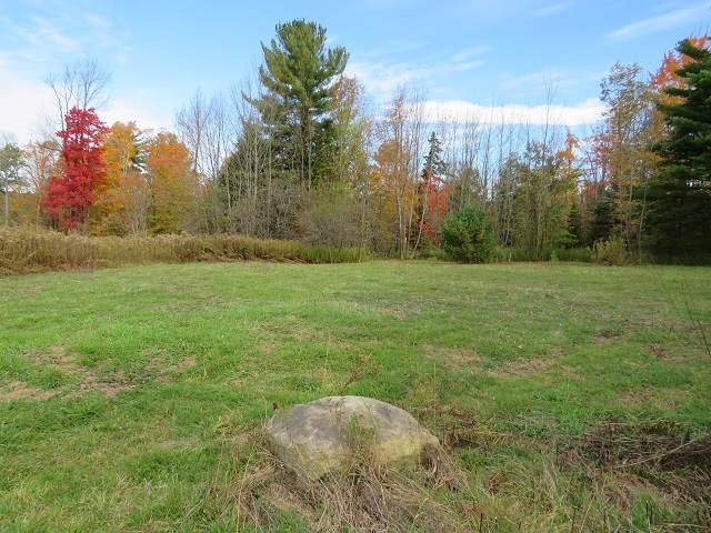 North Bush Rd, Johnstown, NY 12095 (MLS #201932704) :: Picket Fence Properties