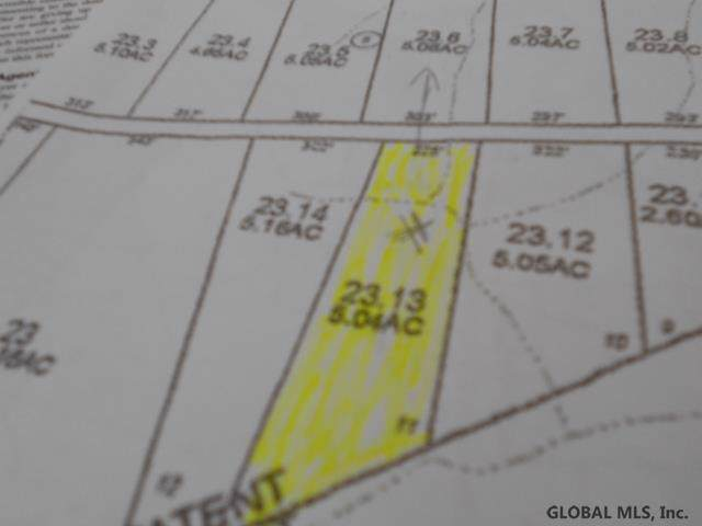 Lot #11 New York State Route 197, Fort Edward, NY 12828 (MLS #201934425) :: 518Realty.com Inc