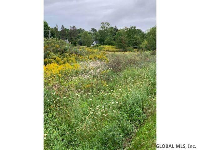 46 Mammoth Spring Rd, Wynantskill, NY 12198 (MLS #202027935) :: 518Realty.com Inc