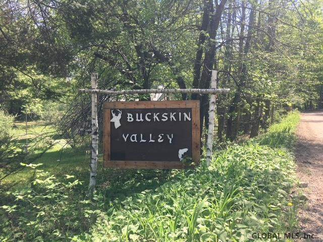0 Buckskin Valley Rd, Johnsburg, NY 12843 (MLS #202121209) :: Carrow Real Estate Services