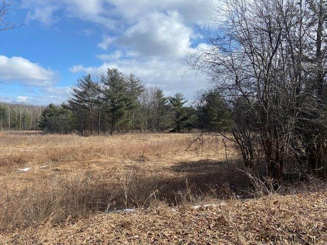 00 Stove Pipe Rd, Voorheesville, NY 12186 (MLS #202013448) :: 518Realty.com Inc