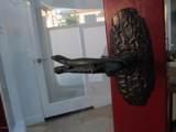 2406 Palomar Avenue - Photo 6