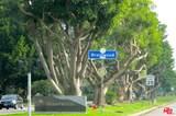 1168 Barrington Ave - Photo 24