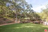 301 Old Topanga Canyon Rd - Photo 15