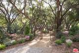 301 Old Topanga Canyon Rd - Photo 18