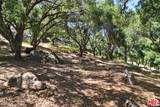 301 Old Topanga Canyon Rd - Photo 4