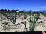 9536 Yucca Terrace Dr - Photo 13