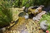 1531 Cerro Gordo St - Photo 6