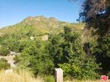 30473 Mulholland Hwy - Photo 6