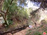 0 Old Topanga Canyon Rd - Photo 9