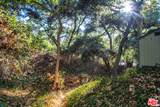 1514 Topanga Skyline Dr - Photo 44