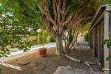 28850 Avenida Duquesa - Photo 36