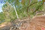 3611 Buena Park Dr - Photo 13