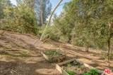 3611 Buena Park Dr - Photo 14