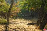 1101 Cold Canyon Rd - Photo 49