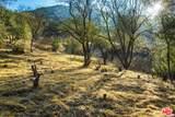 1101 Cold Canyon Rd - Photo 50