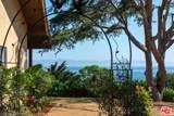 3150 Sea Cliff - Photo 3