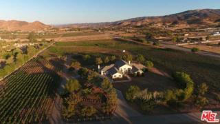 9640 Sierra Highway, Agua Dulce, CA 91390 (#17211292) :: Paris and Connor MacIvor