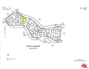 17548 W Revello Drive, Pacific Palisades, CA 90272 (#17213548) :: The Fineman Suarez Team