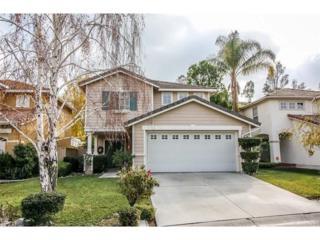 19932 Blackbird Lane, Canyon Country, CA 91351 (#SR17060100) :: Paris and Connor MacIvor